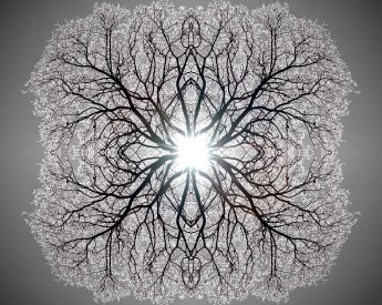 Theme - Point of Light